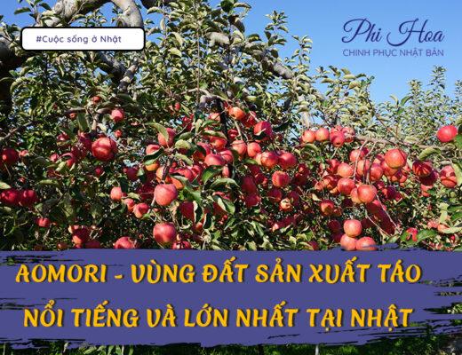 Aomori - Vùng đất sản xuất táo nổi tiếng và lớn nhất tại Nhật Bản